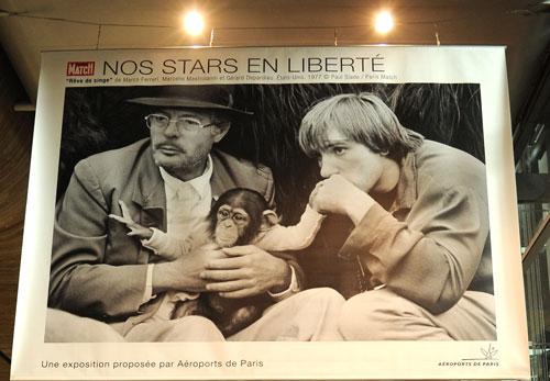 nos-stars-en-liberte-1
